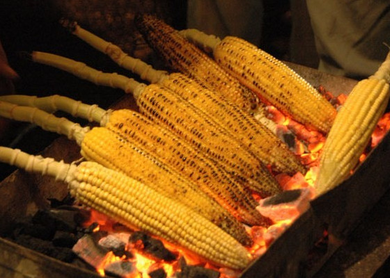 grilled corn cob
